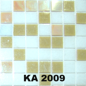 KA 2009