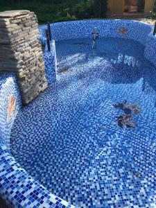 Рыбки с тенью в бассейне.