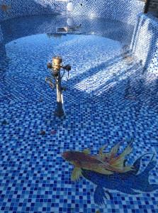 Объёмная рыбка в чаше бассейна.